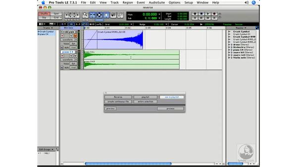 Using processed plug-ins with Reverse: Pro Tools 7 LE Essential Training