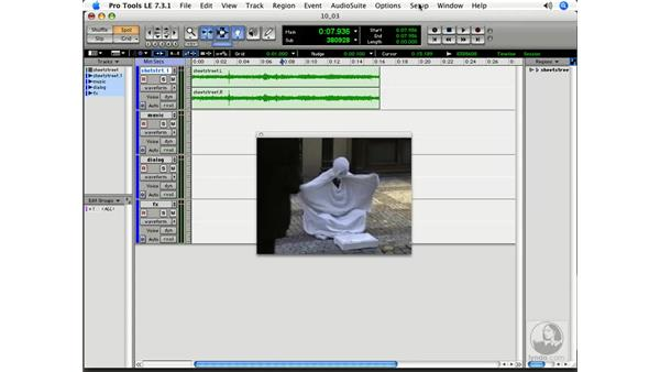 Displaying your video: Pro Tools 7 LE Essential Training