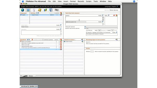 Open-ended questions: Dragon Web Surveys for FileMaker 8.5