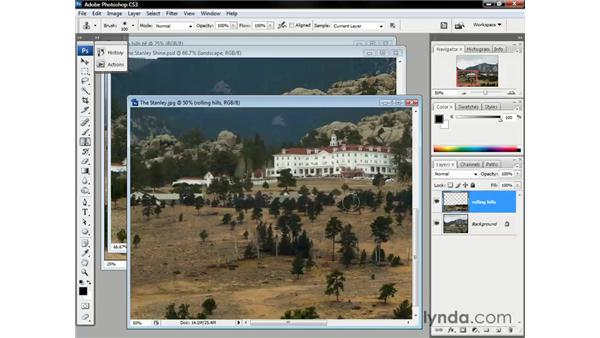 Cloning trees: Photoshop CS3 One-on-One: The Essentials