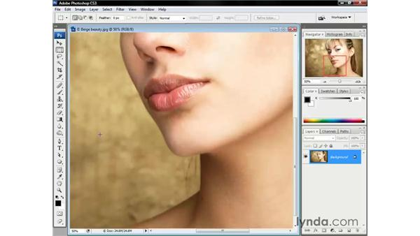 Nudging the screen image: Photoshop CS3 One-on-One: The Essentials