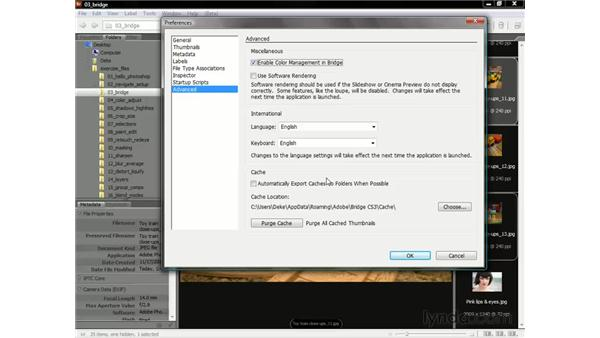 Color management and cache: Photoshop CS3 One-on-One: The Essentials
