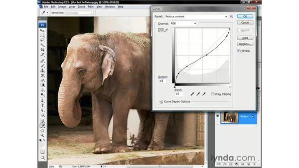 Neutralizing the pink pachyderm: Photoshop CS3 One-on-One: The Essentials