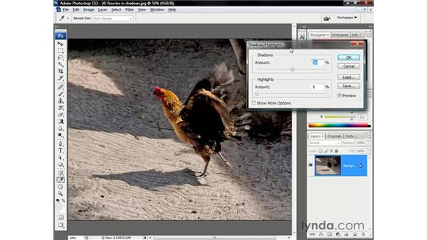 The Shadow/Highlight filter: Photoshop CS3 One-on-One: The Essentials