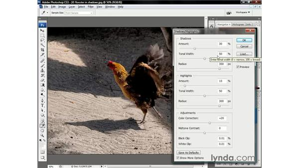 Adjusting the Radius and Tonal Width: Photoshop CS3 One-on-One: The Essentials