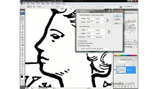 Downsampling your artwork: Photoshop CS3 One-on-One: The Essentials