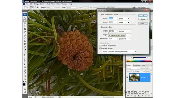 How do you make a small image big?: Photoshop CS3 One-on-One: The Essentials