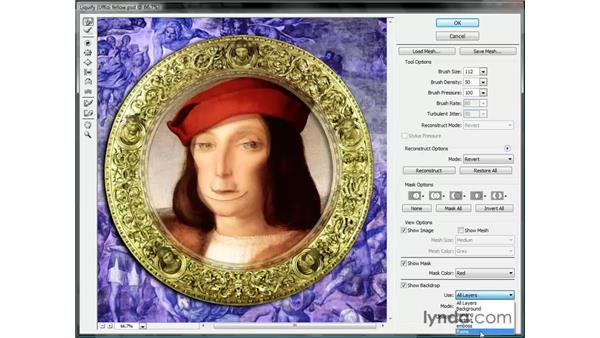 Viewing layers and the mesh: Photoshop CS3 One-on-One: Beyond the Basics