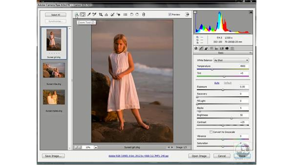 The Camera Raw 4 interface: Photoshop CS3 One-on-One: Advanced Techniques