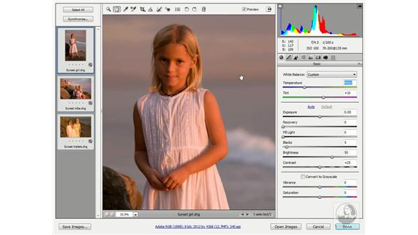 Adjusting the white balance: Photoshop CS3 One-on-One: Advanced Techniques