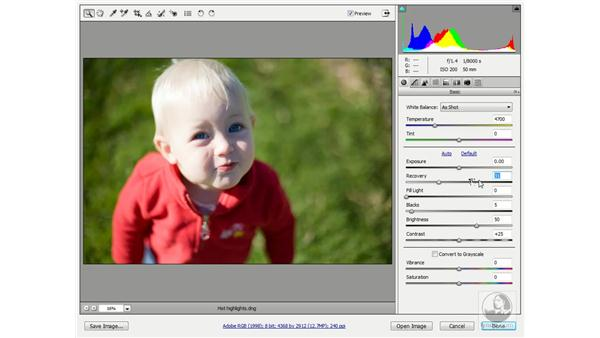 Using the exposure controls: Photoshop CS3 One-on-One: Advanced Techniques