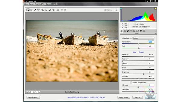The new and improved clipping warnings: Photoshop CS3 One-on-One: Advanced Techniques