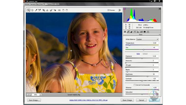 Vibrance and Saturation: Photoshop CS3 One-on-One: Advanced Techniques