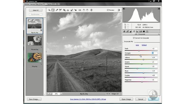 Mapping colors to black and white: Photoshop CS3 One-on-One: Advanced Techniques