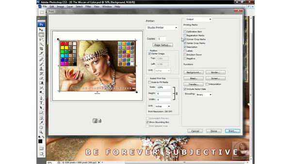 The Output options: Photoshop CS3 One-on-One: Advanced Techniques