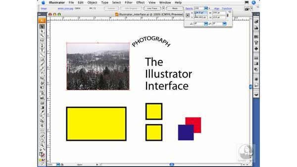 Using the control panel: Illustrator CS3 Essential Training