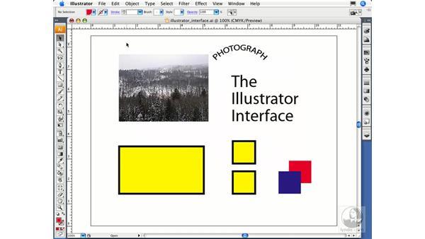 Choosing preview options: Illustrator CS3 Essential Training