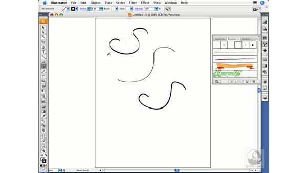 Painting with the Paintbrush tool: Illustrator CS3 Essential Training