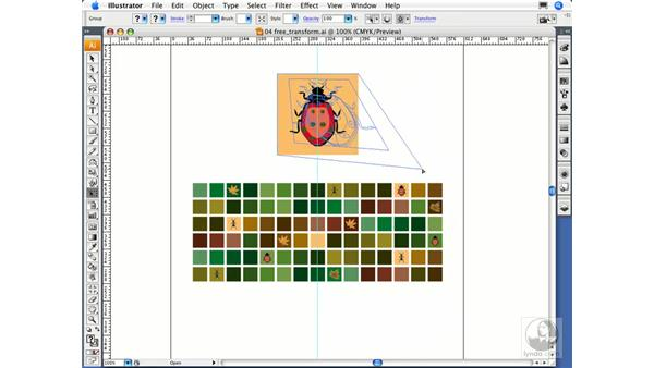 Using the Free Transform tool: Illustrator CS3 Essential Training
