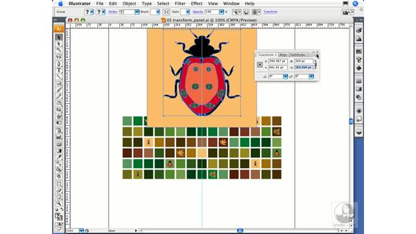 Using the Transform panel: Illustrator CS3 Essential Training