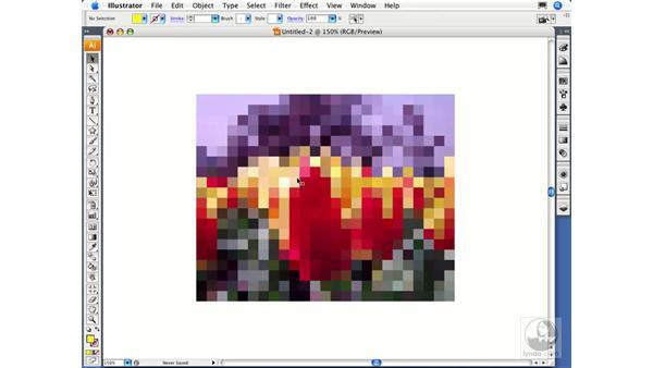 Object mosaic: Illustrator CS3 Essential Training
