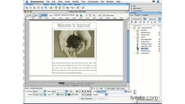 Link basics: Dreamweaver CS3 Essential Training