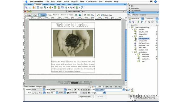 External links: Dreamweaver CS3 Essential Training