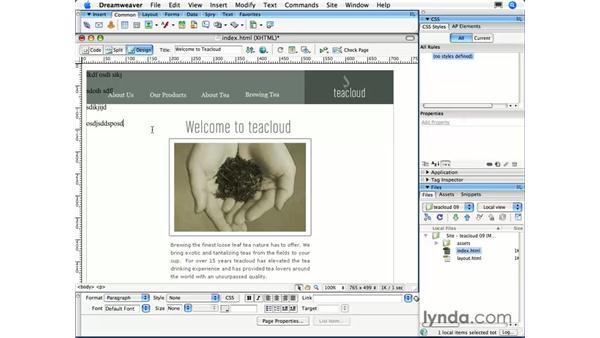 Tracing images: Dreamweaver CS3 Essential Training
