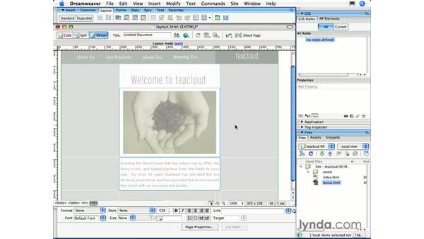 Working with Layout Tables: Dreamweaver CS3 Essential Training