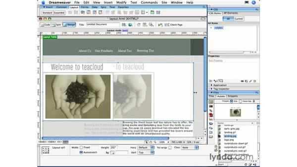 Adjusting table widths and nesting tables: Dreamweaver CS3 Essential Training