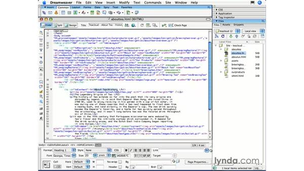 Working with Code Collapse: Dreamweaver CS3 Essential Training