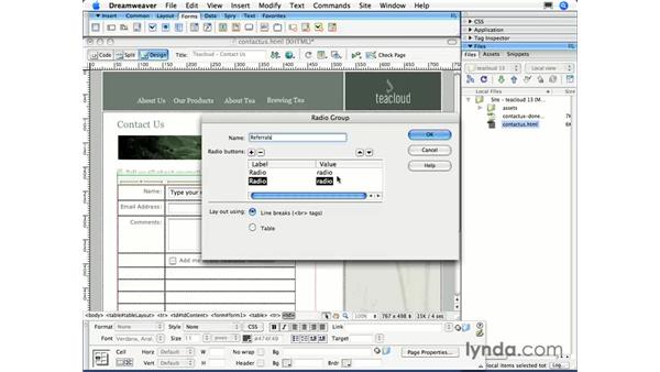 Adding checkboxes and radio buttons: Dreamweaver CS3 Essential Training