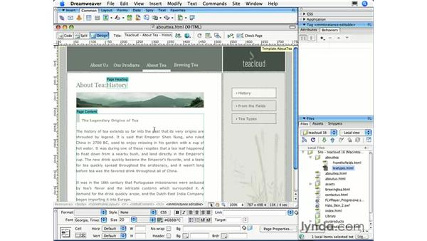 Templates in action: Dreamweaver CS3 Essential Training