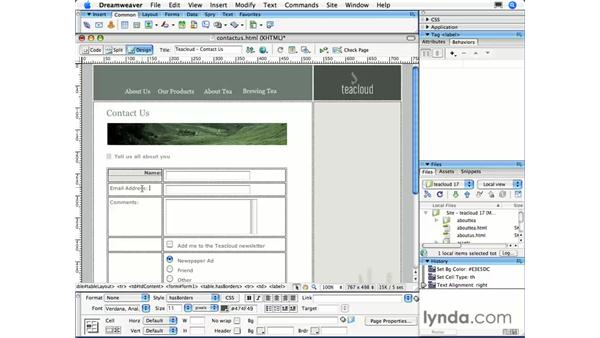 : Dreamweaver CS3 Essential Training