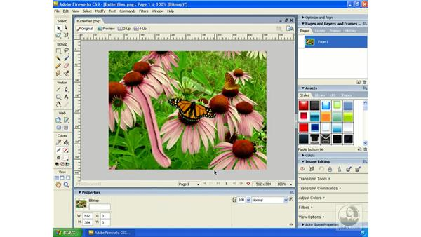 Using the Smudge tool: Fireworks CS3 Essential Training