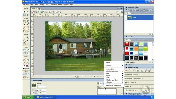 Using the Property Inspector: Fireworks CS3 Essential Training