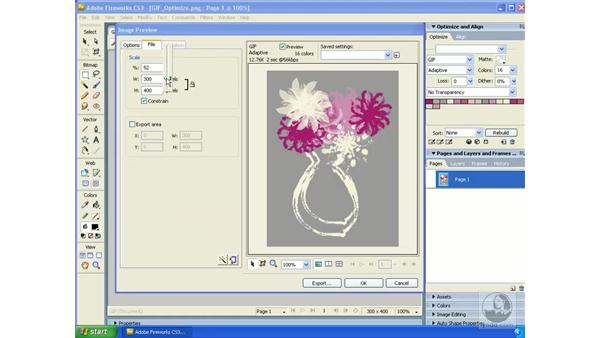 Understanding the Image Preview Window: Fireworks CS3 Essential Training