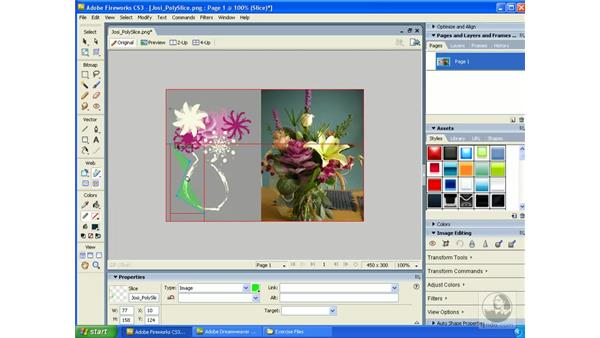 Using the Polygon Slice tool: Fireworks CS3 Essential Training