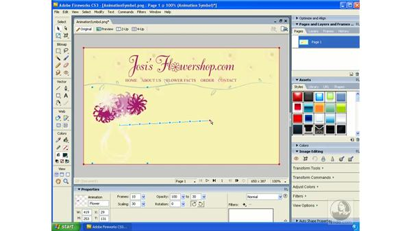 Animating symbols: Fireworks CS3 Essential Training