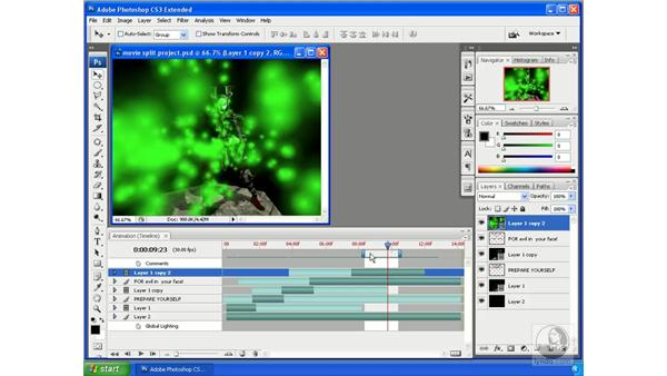 Using work areas: Photoshop CS3 Extended for 3D + Video
