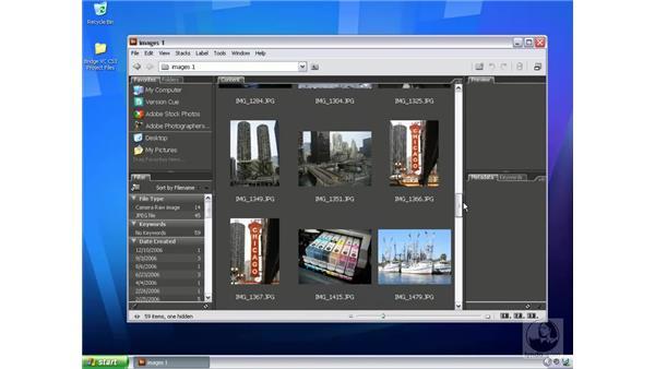What is Bridge?: Bridge and Version Cue CS3 Essential Training