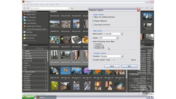 Viewing a slideshow: Bridge and Version Cue CS3 Essential Training
