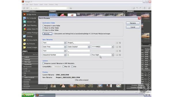 Batch renaming: Bridge and Version Cue CS3 Essential Training