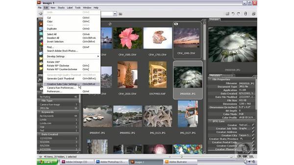Synchronizing color: Bridge and Version Cue CS3 Essential Training