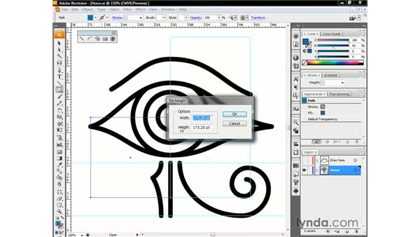 : Illustrator CS3 One-on-One: The Essentials