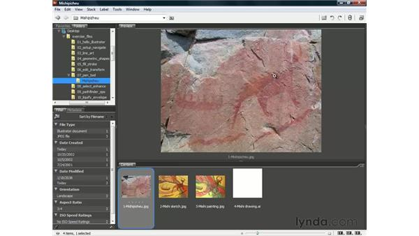 Tracing a scanned image or photograph: Illustrator CS3 One-on-One: The Essentials