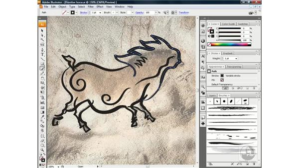 Repainting and smoothing paths: Illustrator CS3 One-on-One: Beyond the Basics