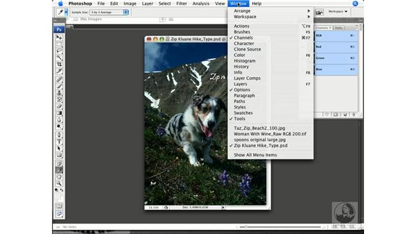 Intro to the color tools: Photoshop CS3 Color Correction