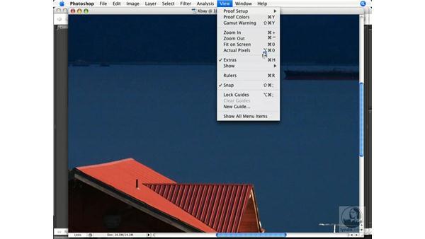 Image navigation: Photoshop CS3 Color Correction