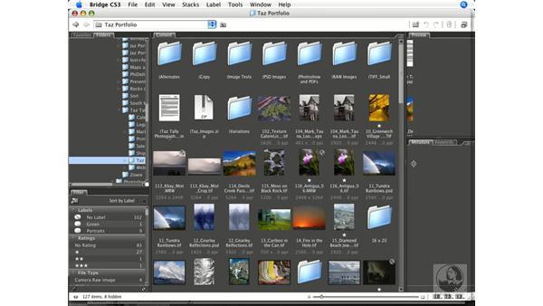 Bridge interface overview: Photoshop CS3 Color Correction